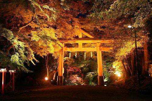 『日吉大社ライトアップ』(滋賀県大津市)