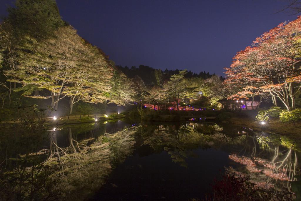 『六甲高山植物園』(兵庫県神戸市)