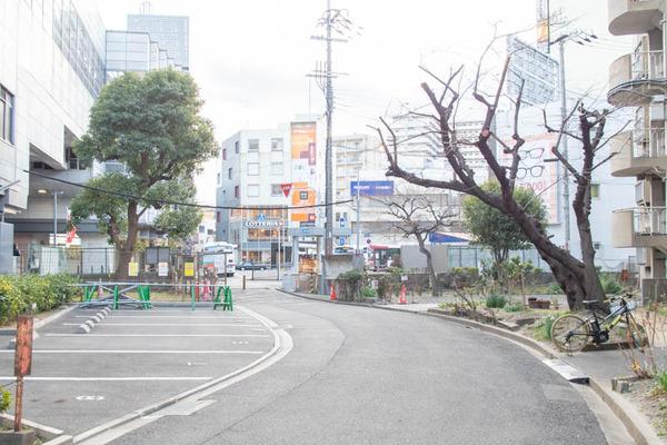 あきっぱ-1901246