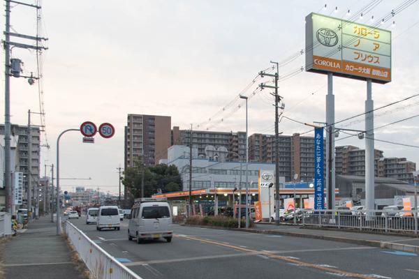 カローラ大阪-1902222