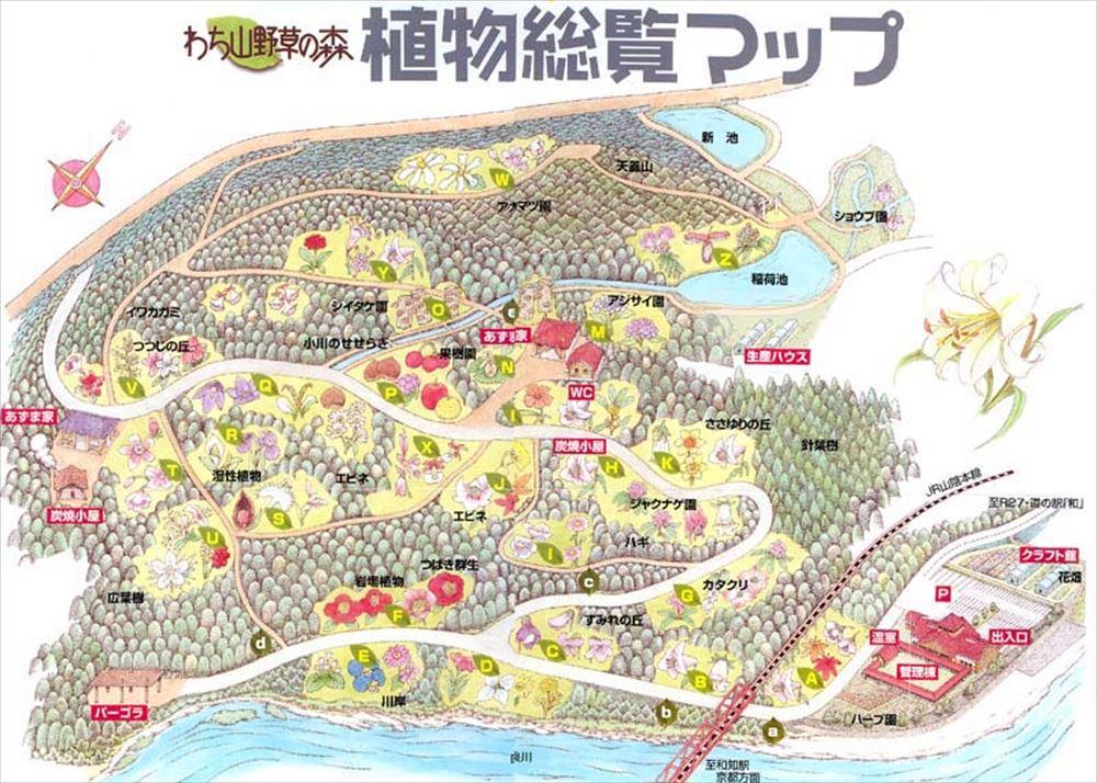 f:id:kyotoside_writer:20190416192032j:plain
