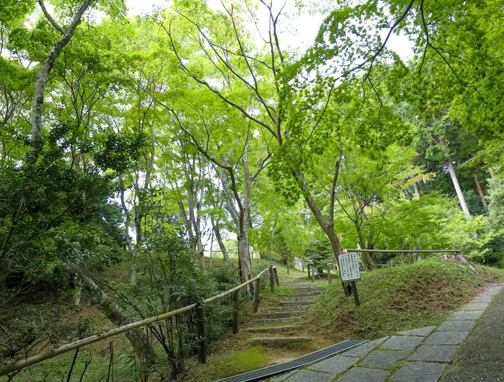 f:id:kyotoside_writer:20191017100414j:plain
