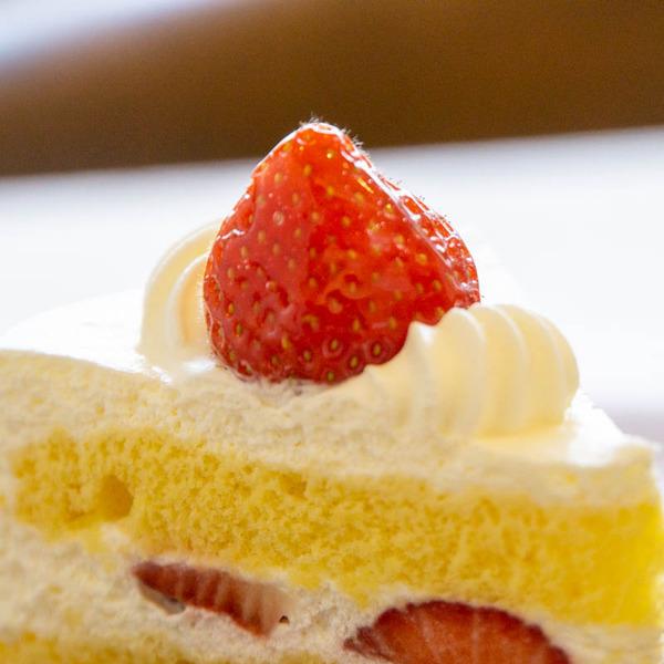 ケーキ-1911193