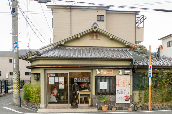れんげ-1911256