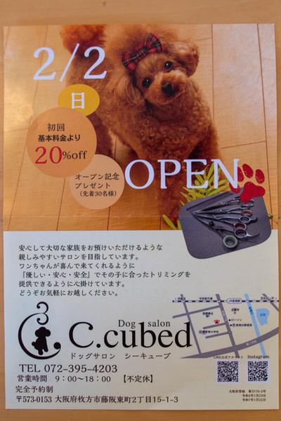 ぶっちょ1-2002211