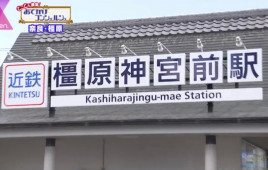 奈良県推奨の幻の豚肉でしゃぶしゃぶを!奈良・橿原の知られざる名物グルメ店4つ
