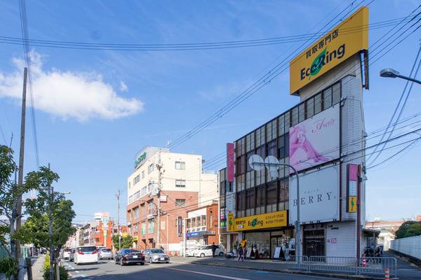 えこ-2002041