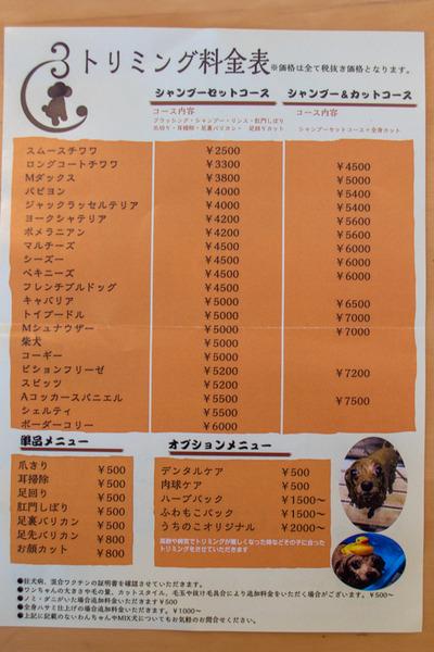 ぶっちょ1-2002212