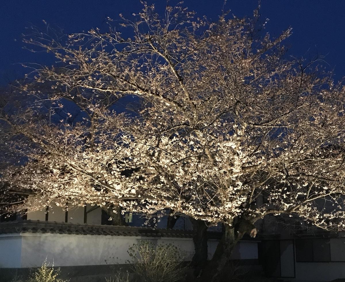 f:id:kyotoside_writer:20180325184212j:plain