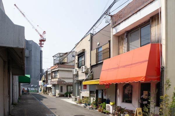 ぽわぽわ-2004089