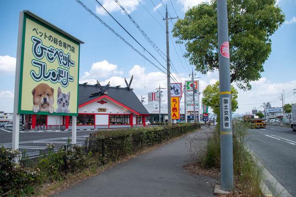 神座-2005132