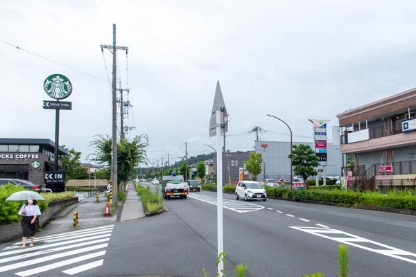 なごみ-2007096