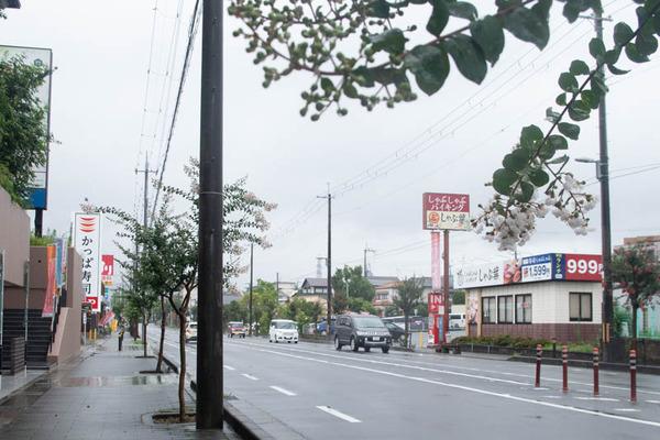 しゃぶ1-2007141