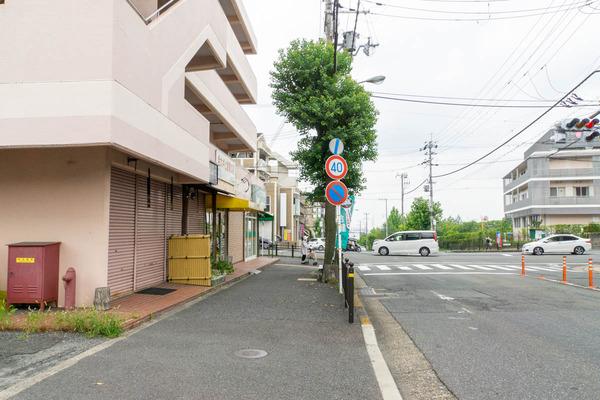 男山-2008032