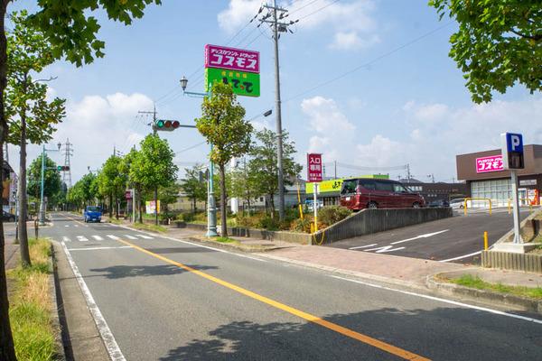 こすもん-2008249