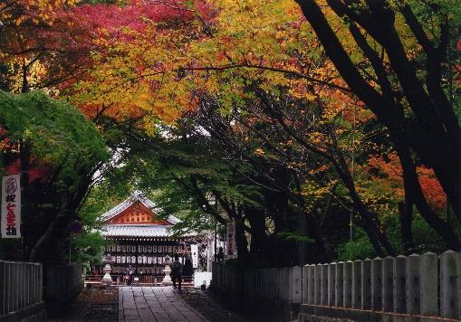 f:id:kyotoside_writer:20200925120604j:plain