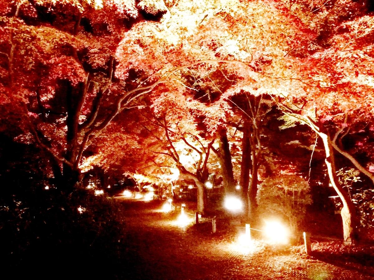 f:id:kyotoside_writer:20200927165534j:plain