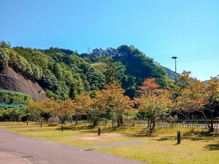 f:id:kyotoside_writer:20201006203335j:plain