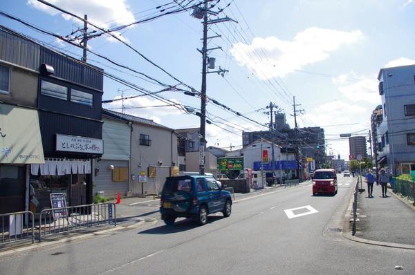 としのぶ-20101315