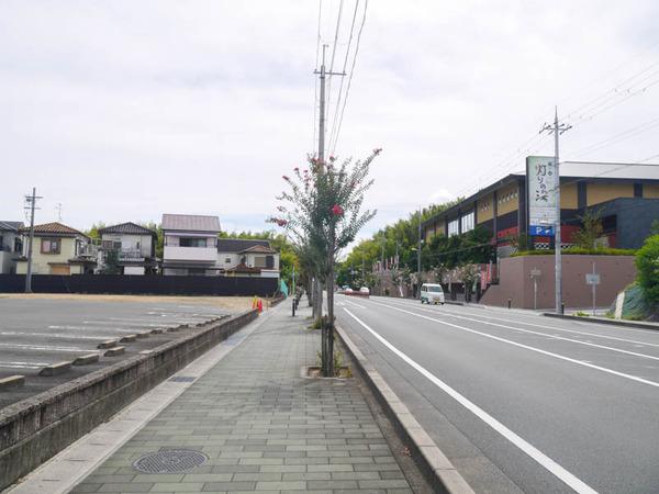 しゃぶ葉-2009149