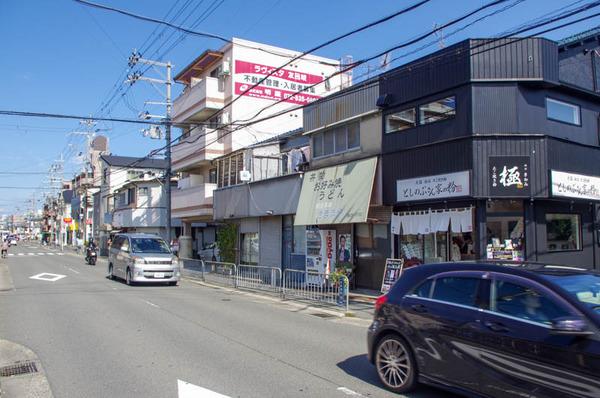 としのぶ-20101312