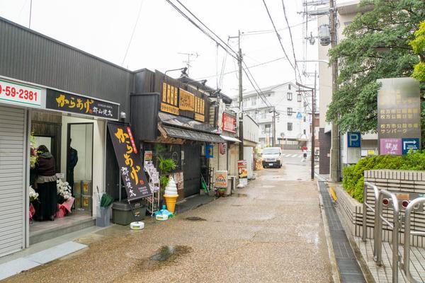 からあげ-2011021