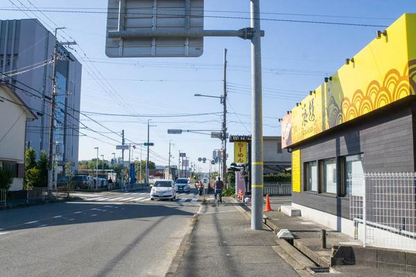 きんせい-2011046