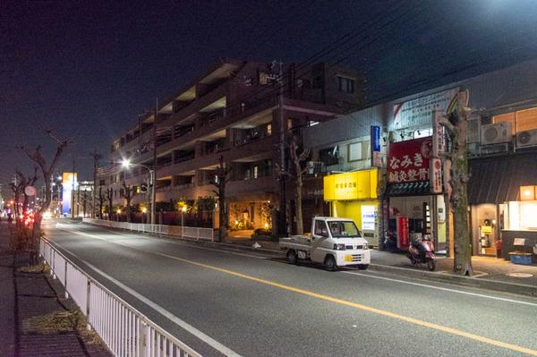 駒-2012213