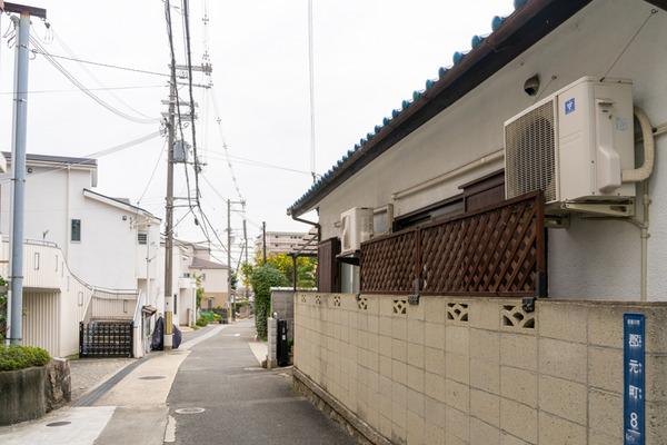 めだか-2011255