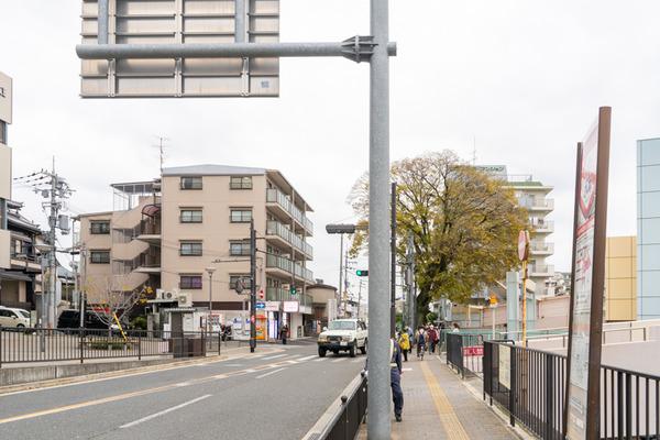 めだか-2011252