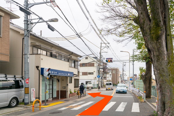 めだか-20112519