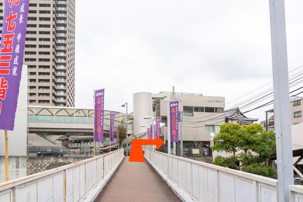 めだか-2011251