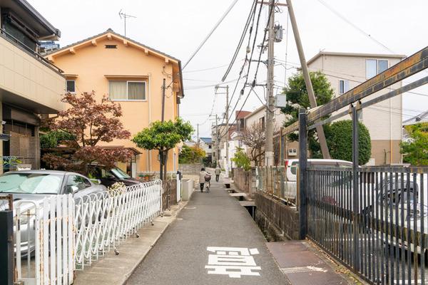 めだか-20112518