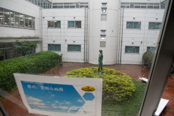仰星-2010087
