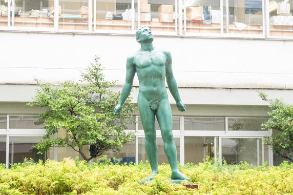 仰星-2010088