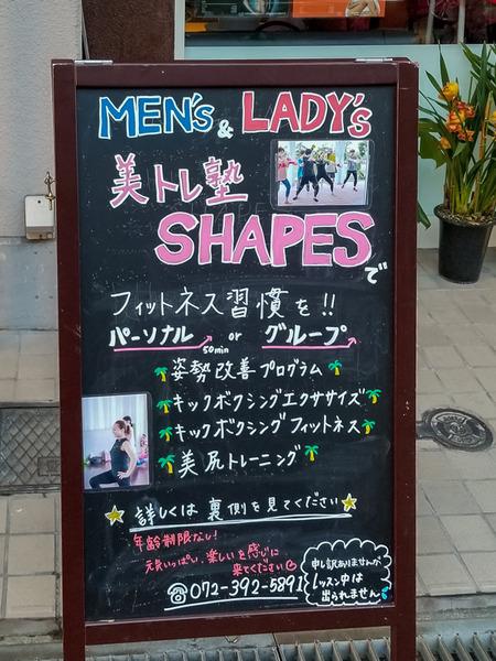 SHAPES-2102061