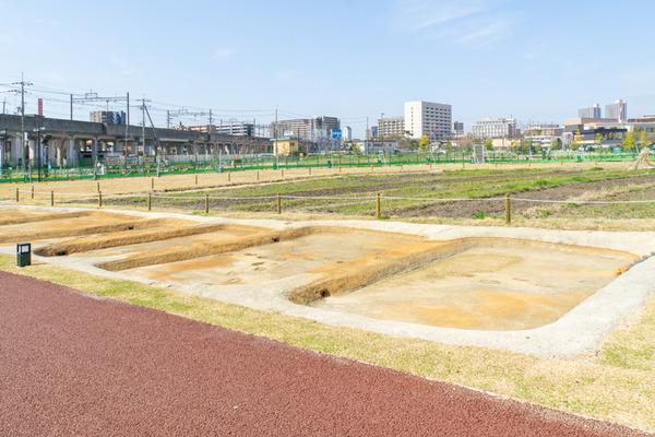 安満遺跡公園-21032411