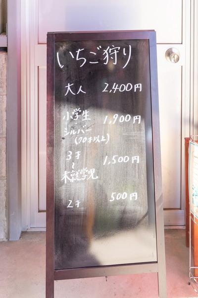 いちご-21030335