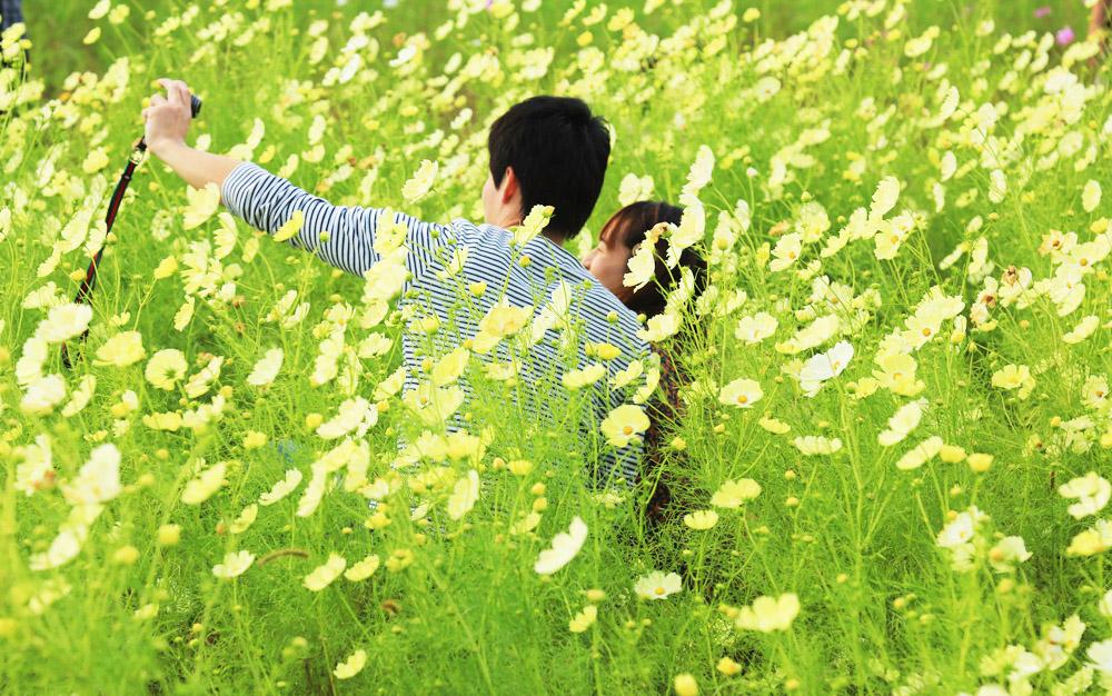 f:id:kyotoside_writer:20210825125623j:plain