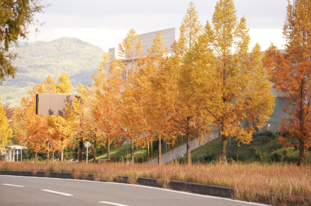 f:id:kyotoside_writer:20211005150118j:plain